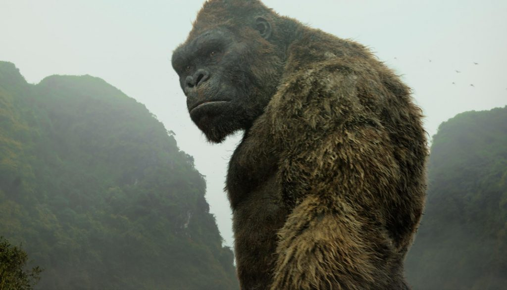 Foto de Netflix confirma un anime, basado en Kong Skull Island