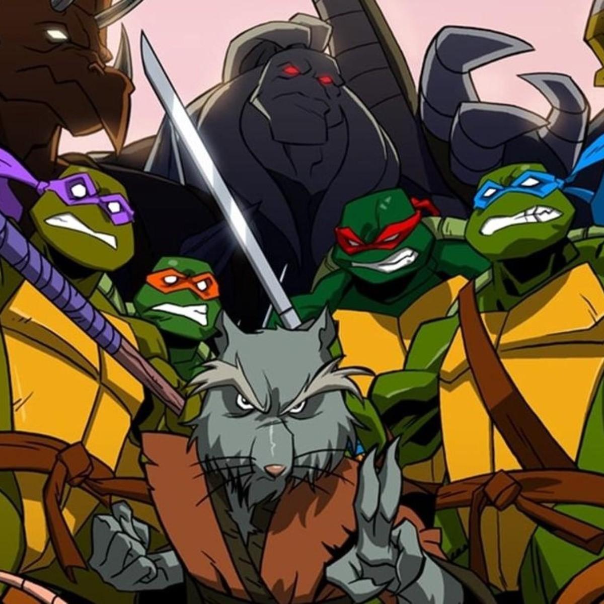 Foto de Seth Rogen confirma que la nueva película de las Tortugas Ninja se estrenará en el año 2023