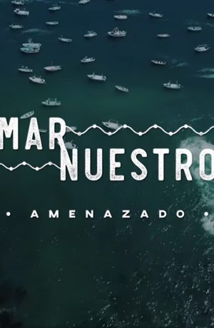 """Foto de """"Mar Nuestro"""": el documental que revela cómo se viene sobreexplotando y contaminando el mar peruano"""
